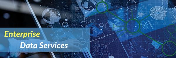 Enterprise Data Services.png
